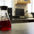 Кутовий білок стане основою для створення штучної крові