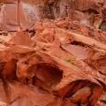 Спробуйте знайти оголених моделей на цих фото: боді-арт, замаскований під ландшафт