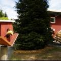Божевільний будинок в аффольдерне (8 фото)