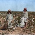 Експлуатація дитячої праці в сша на початку 20 століття
