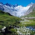 Краса природи швейцарії