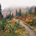 Краса природи в фотографіяx jaka bulc